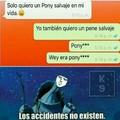 Pony sii claaro