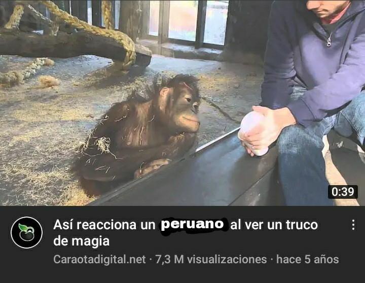 Un peruano - meme