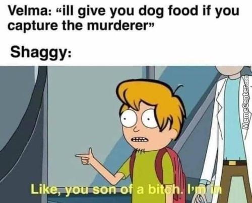 Shaggy. - meme