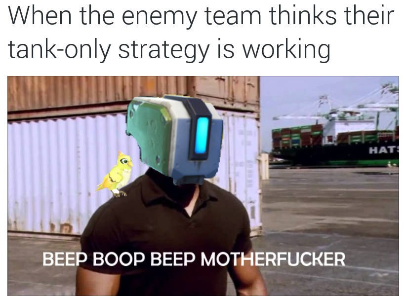Potg material - meme