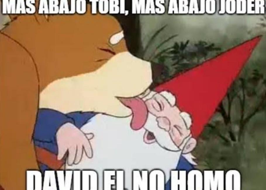 David el no homo - meme