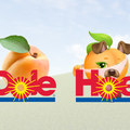 Dole or Hoe