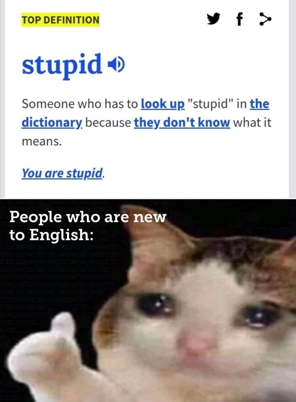 Dumb dumb - meme