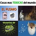Cosas más tóxicas del mundo