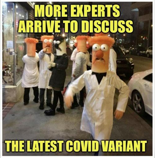 Experts agree - meme