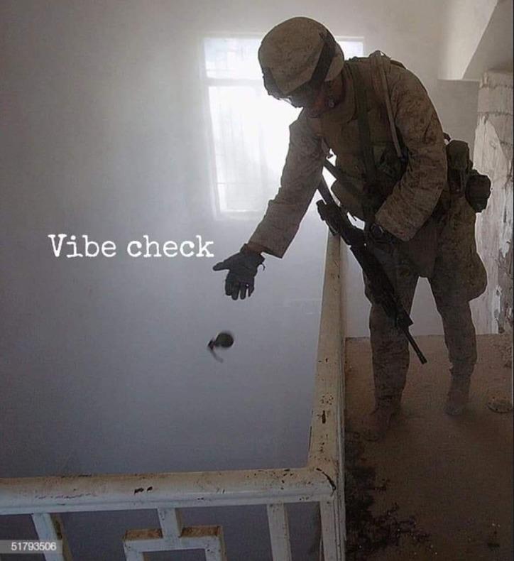 vibe check - meme