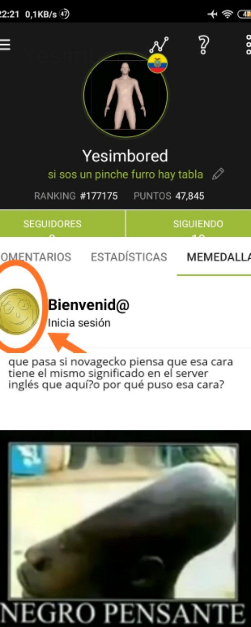 que nos quiere decir con esa cara o no sabe el significado en el server español?¯\_(ツ)_/¯:son: - meme