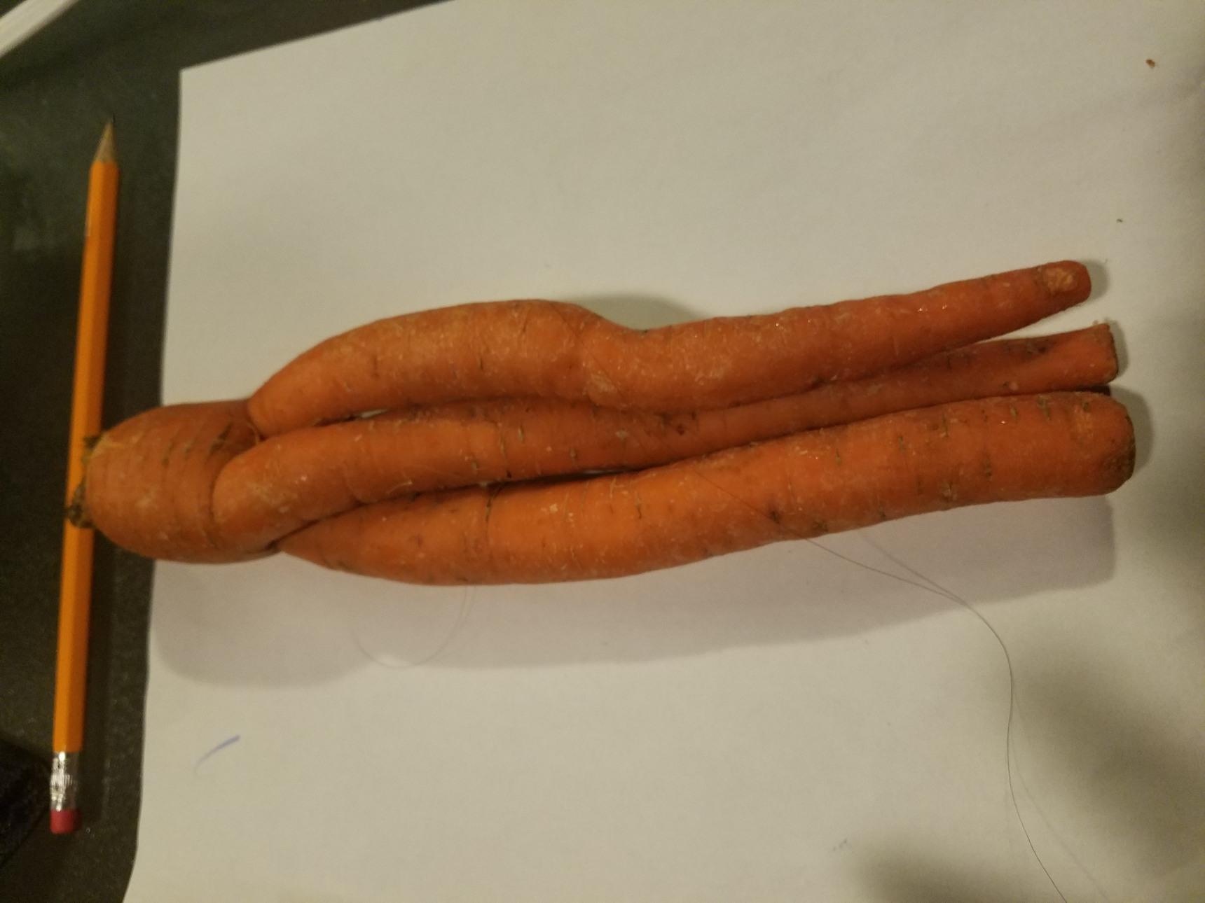 Divine Carrot:   Restores 777 HP when eaten - meme
