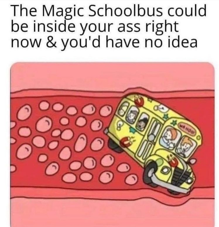 magic schoolbus - meme