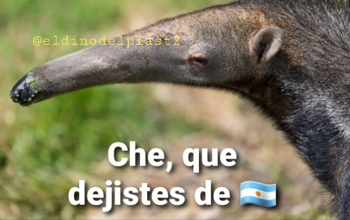 Narizon = Argentino (riete que sufro de depresión) - meme
