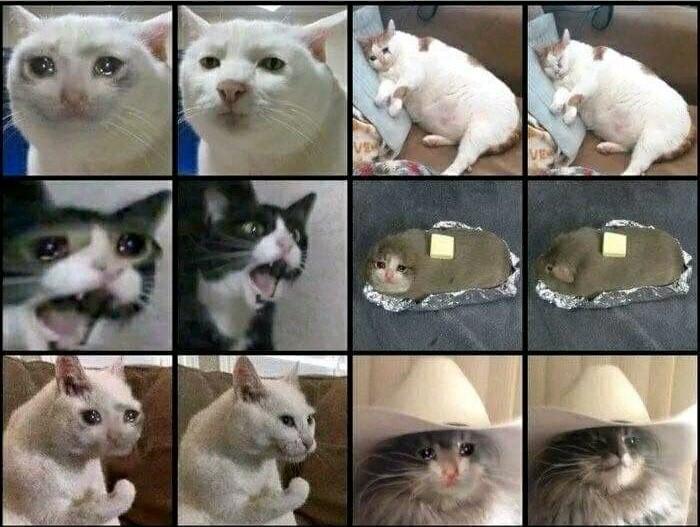Depois e antes do fotoshop - meme