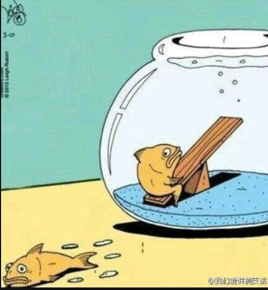 Poor Peter... - meme