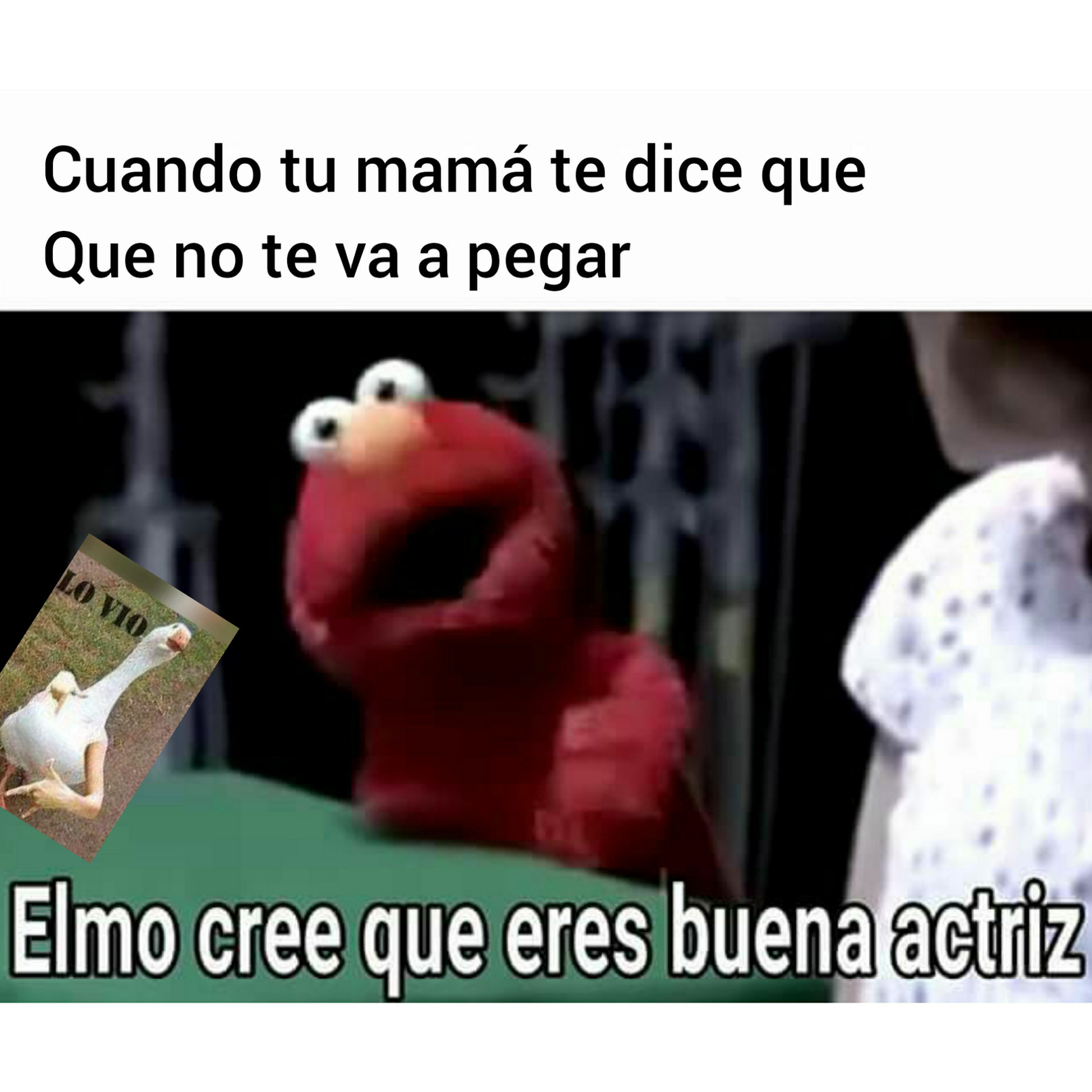 Elmoo ess - meme