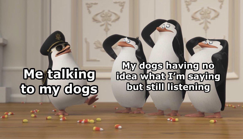 Listen - meme