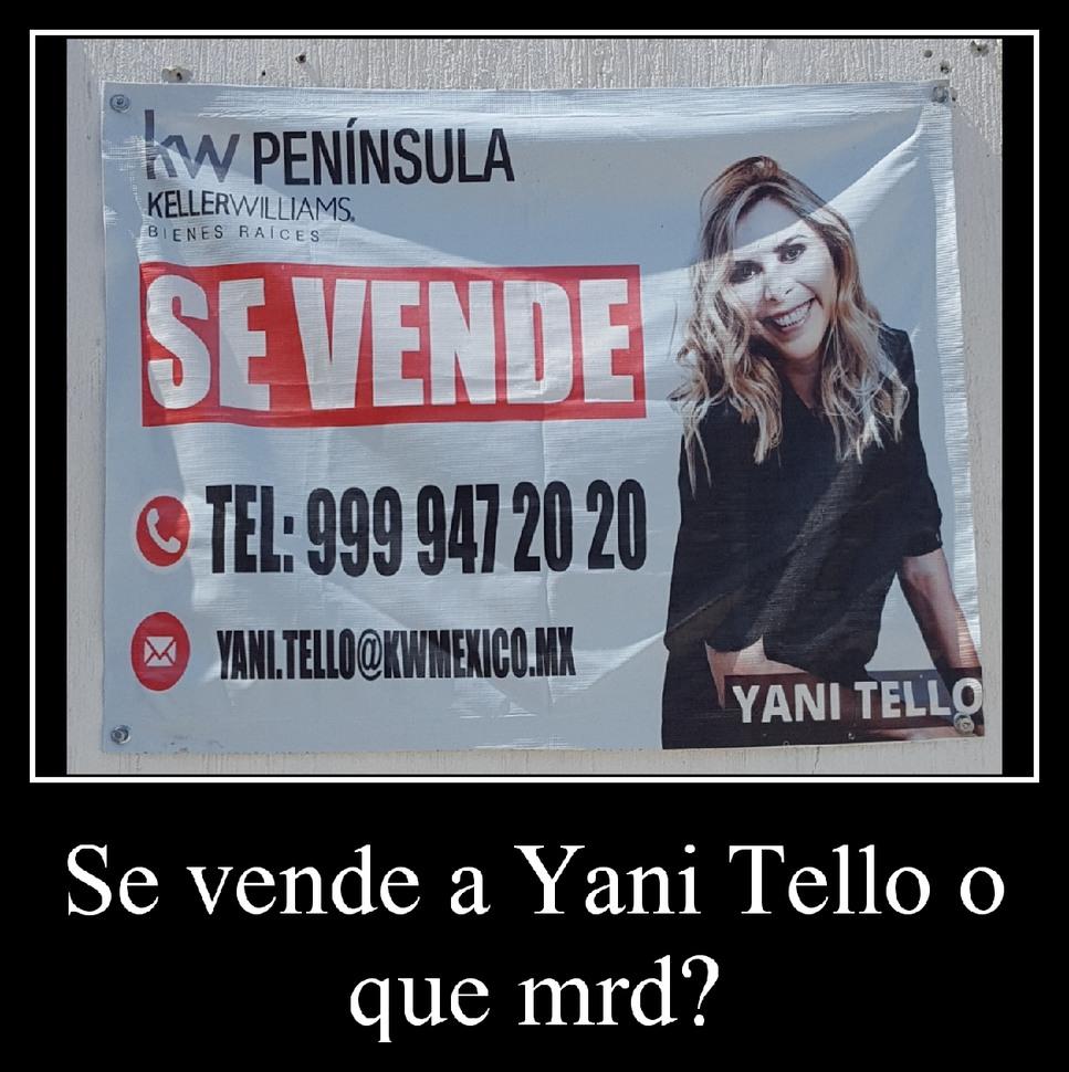 Neta el mejor anuncio publicitario que he visto ಠ_ಠ - meme