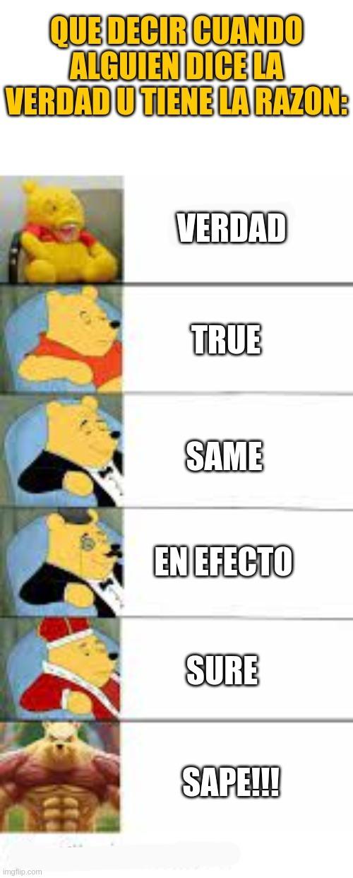 En efecto :sir: - meme