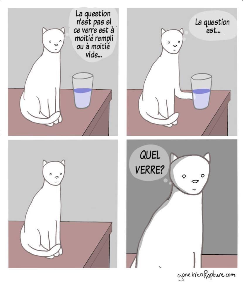 Quel verre? - meme