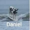 Danirl