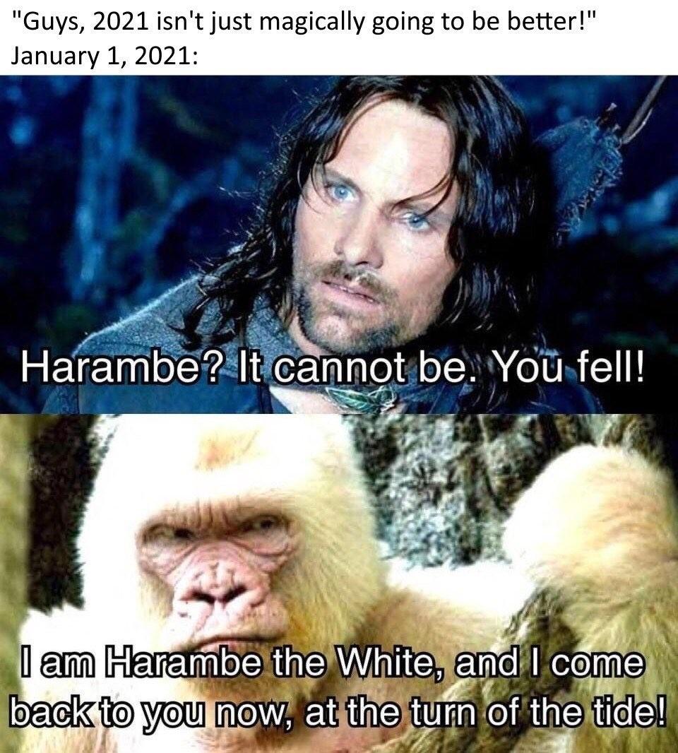 The white - meme
