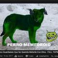perro memedroid Joder