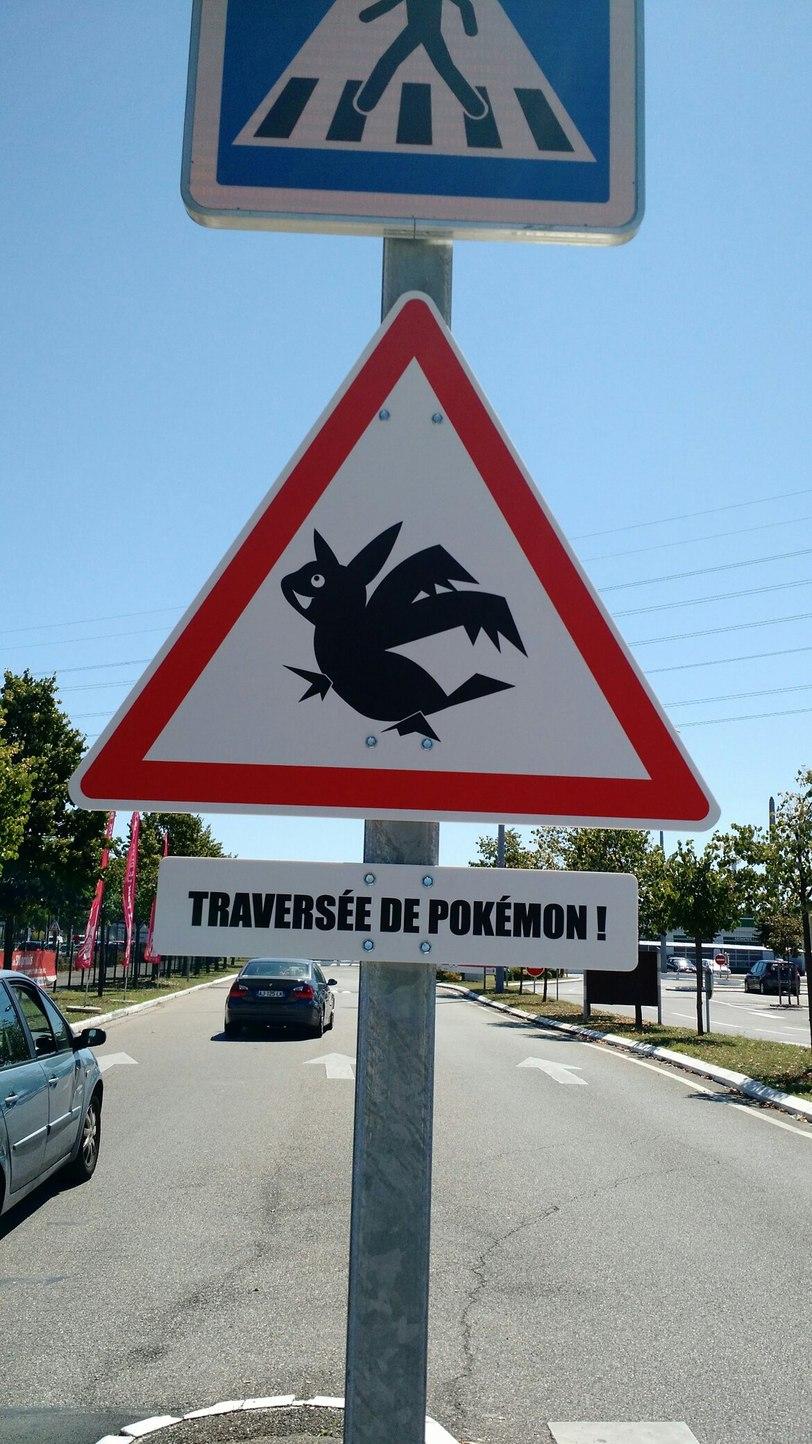 À l'entrée de Carrefour ^^ #pokemongo - meme