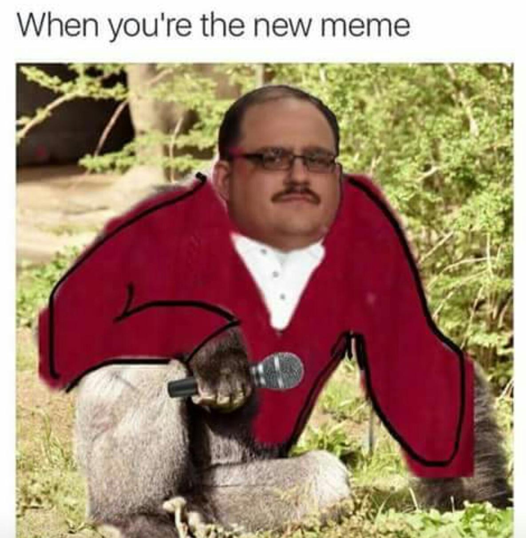HaramBone - meme