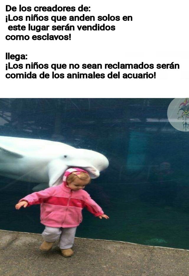 Donde estará ese acuario? - meme