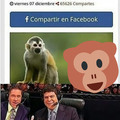 Kakaka do macaco 007