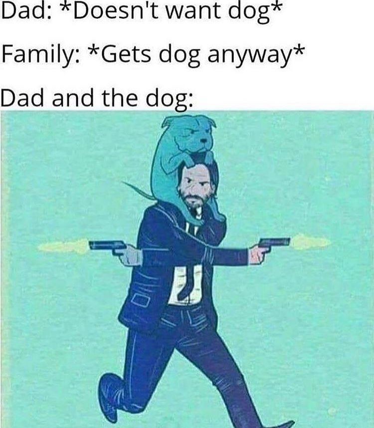 the dog is controlling John wick like ratatouille - meme