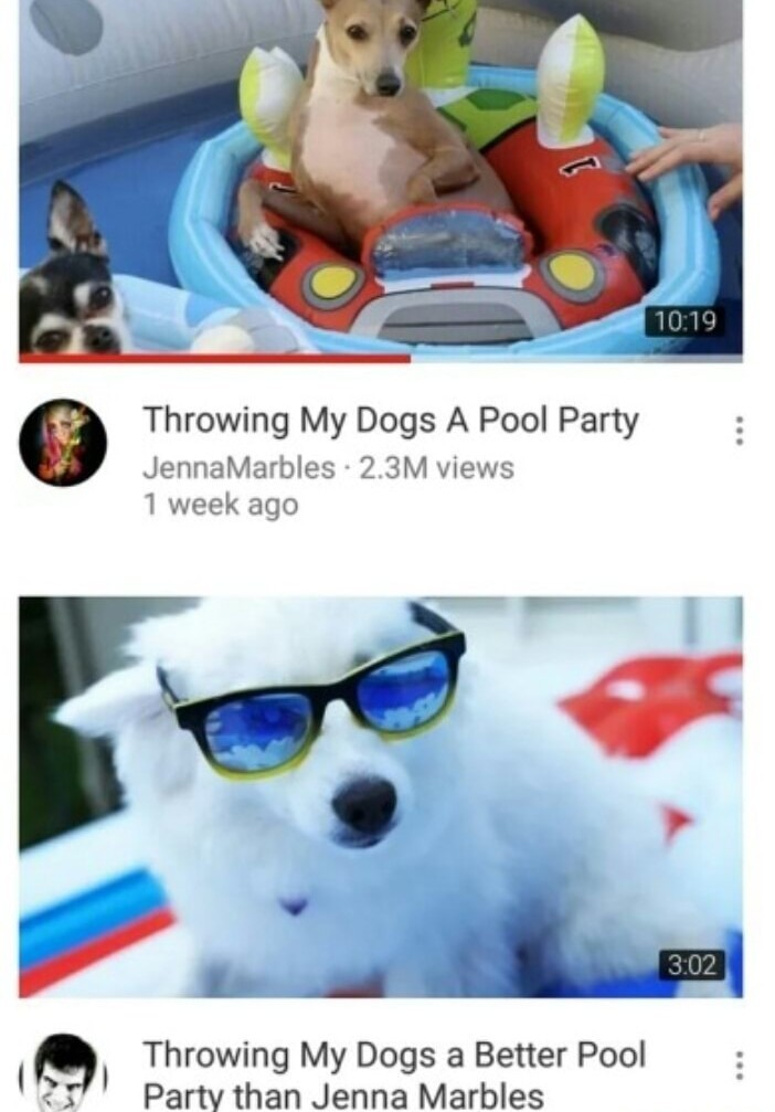 The cooler doggo party - meme