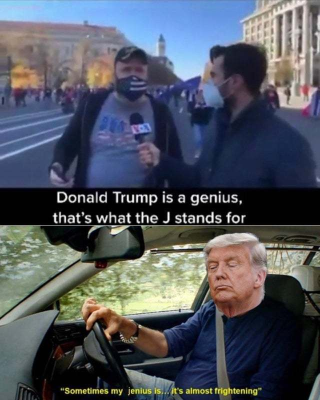 Donald Trump may be a genius but some of their supporters are not - meme