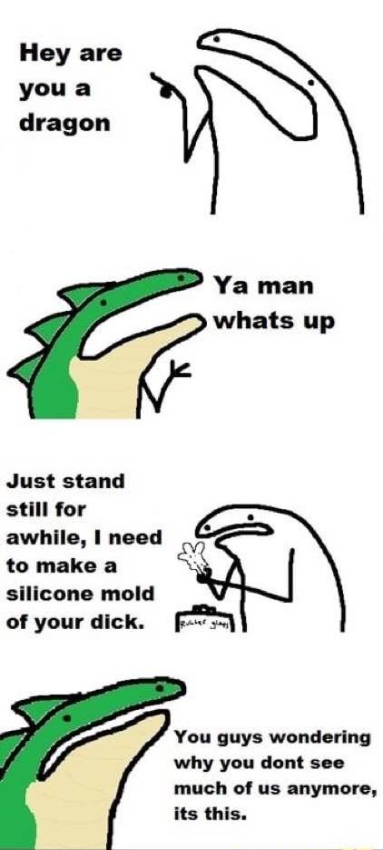 How Bad Dragon got started - meme