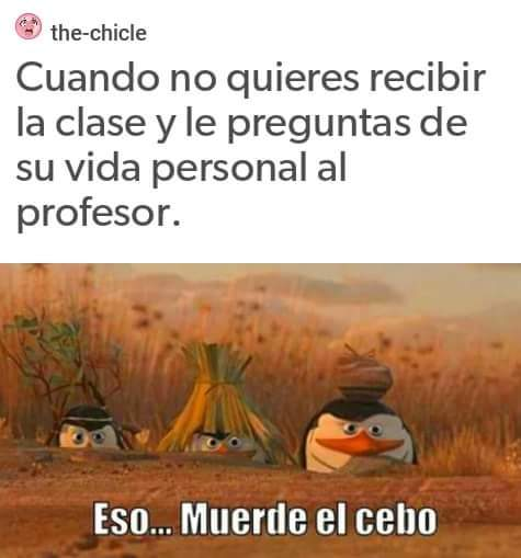 esos maestros - meme