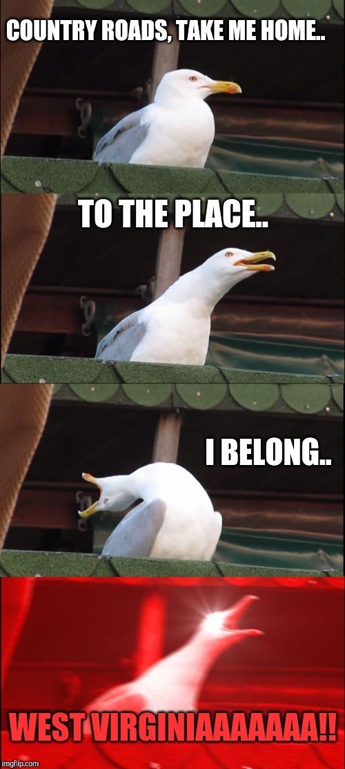 WEST VIRGINAAAAAAAAAAAAAAAA - meme