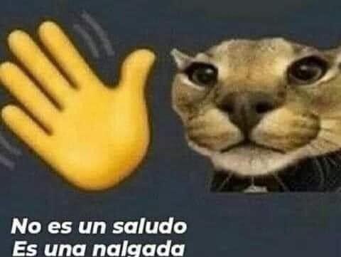 Cachetaso - meme