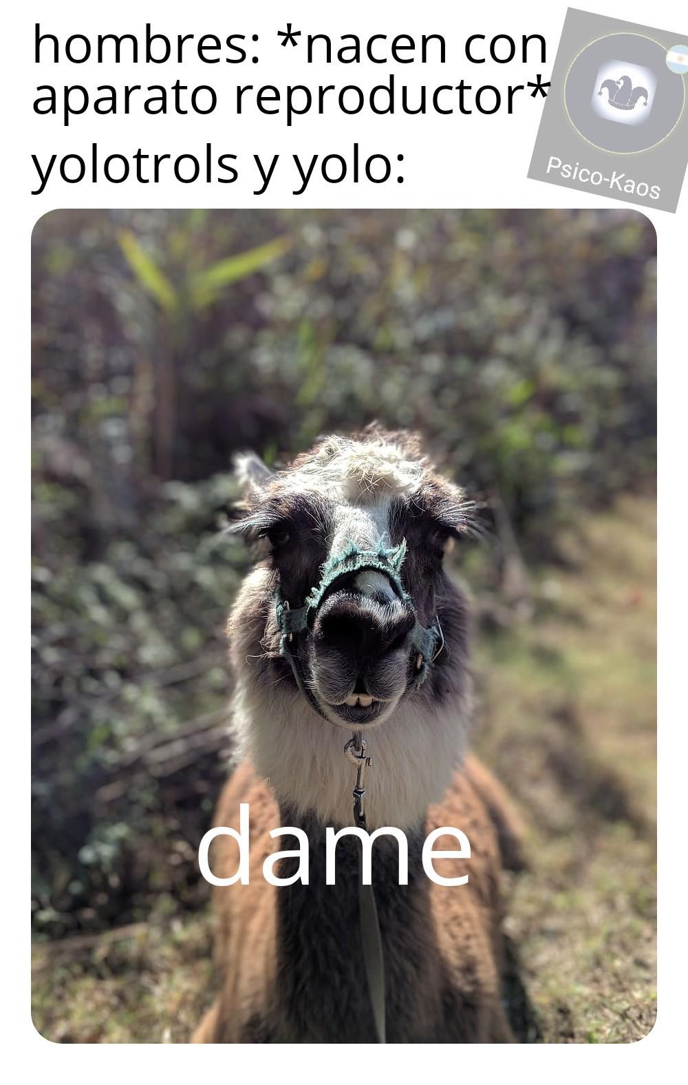 Pene: *existe* el admin: dame - meme