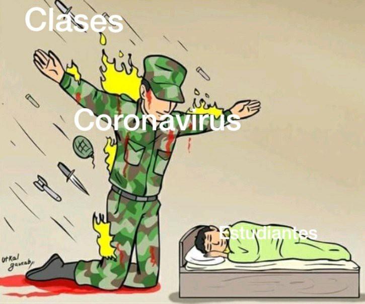 Gracies coronavirus - meme