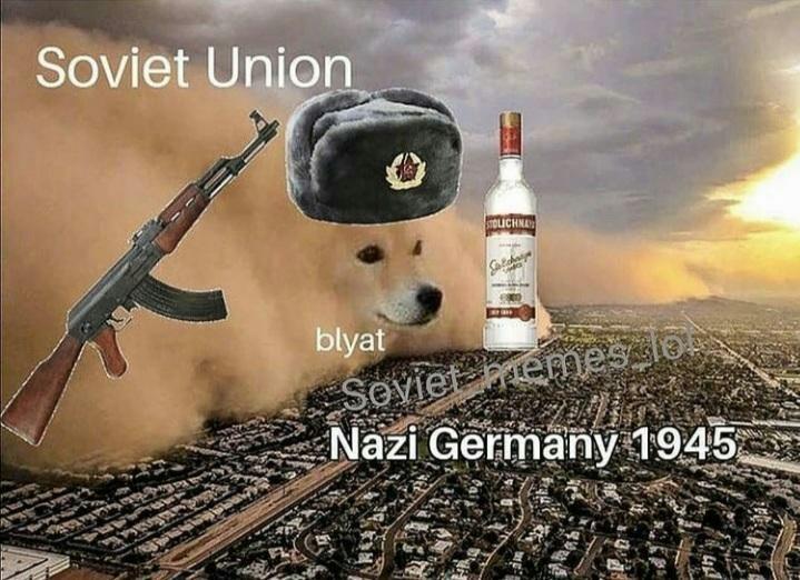 Vodka doggo - meme