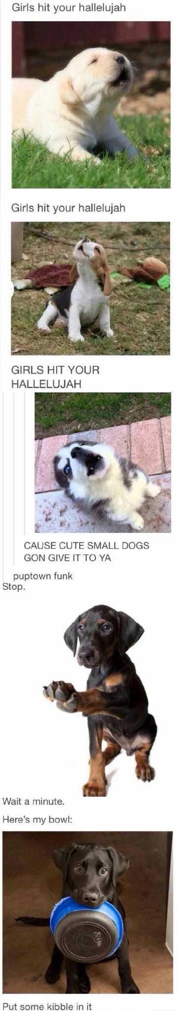 Puptown Funk - meme