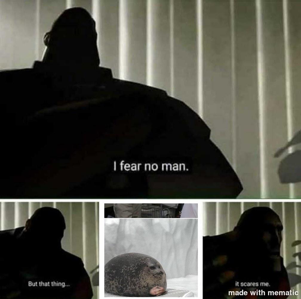 scarry - meme