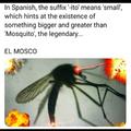 El Mosco