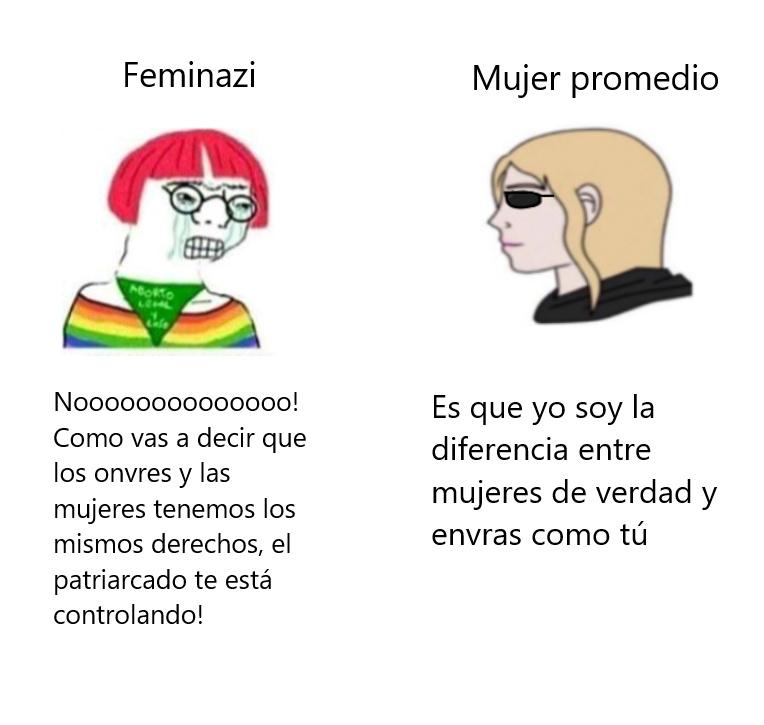 envra vs hembra - meme