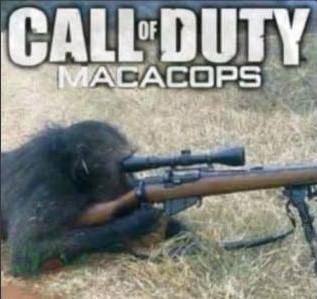 Call of Duty de brasil - meme