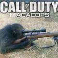 Call of Duty de brasil