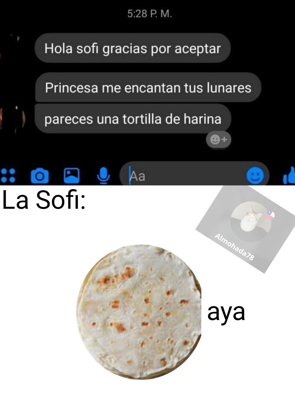 Tortilla de harina.... - meme