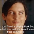 Dark Souls Funny