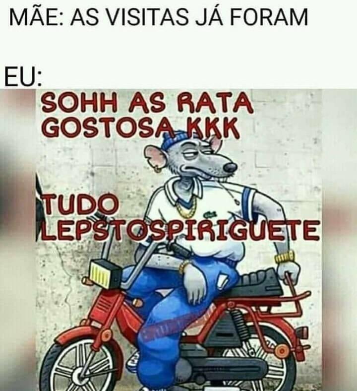 Leptospirose  - meme