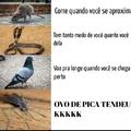 Qualquer erro de português é proposital(ou eu sou burro mesmo)