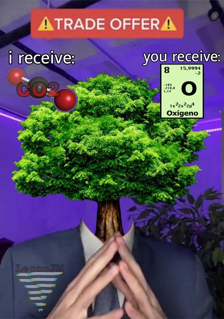 Es una buena oferta... planta un árbol, puto! - meme