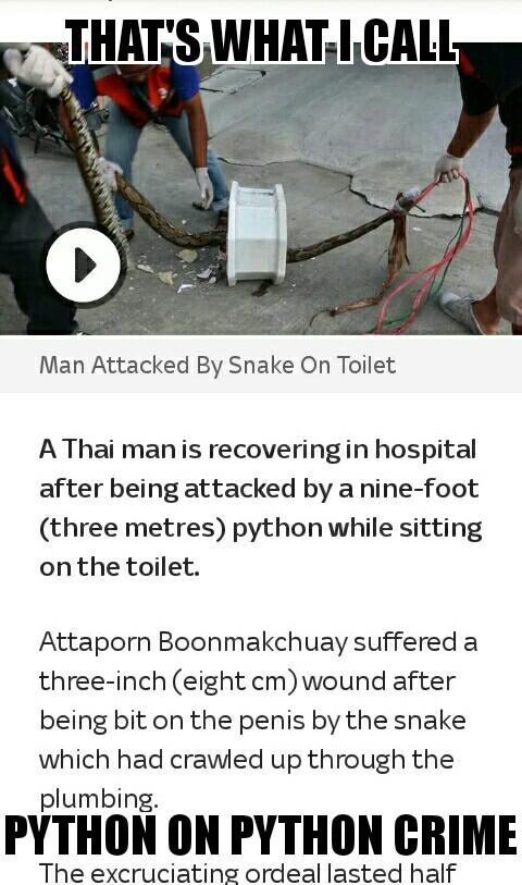 Unfair, his snake only has one eye. - meme